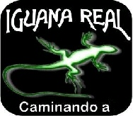 iguanareal1